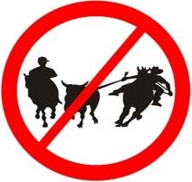 Supremo Tribunal Federal Brasileiro Declara Inconstitucional as Vaquejadas por considerá-las uma prática cruel contra os animais